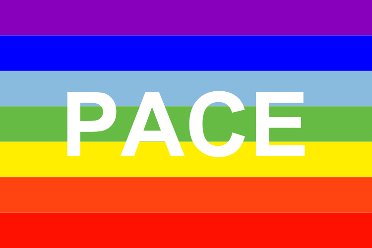 rainbow pace flag lgbt pride flag nationalflags shop your flag